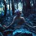 Blue Calx by Kindra Nikole