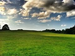 An uneven skyline