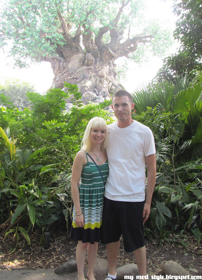 Animal Kingdom us