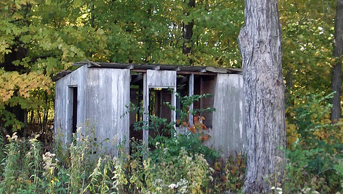 little hickory shed 068