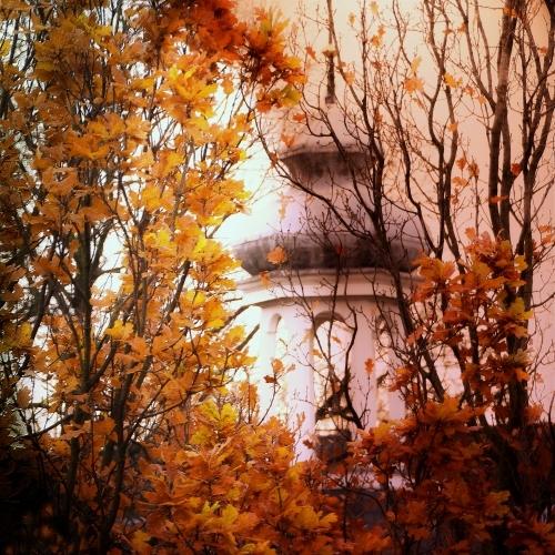 november autumn blur window composition square europe flickr colours award shining schiedam carre mfcc 500x500