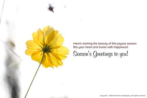 flower seasons greetings wish wonderfulworldofflowers