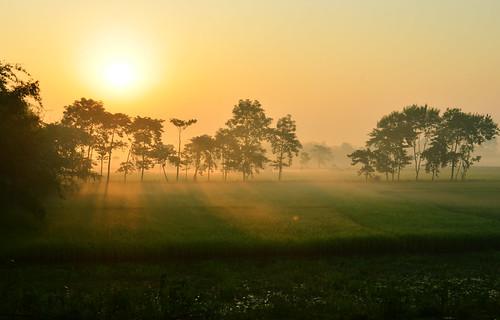 beautiful sunrise landscape highresolution nikon kitlens sunburst dreamy greenfield bengal westbengal bihar greenfields d5100 nikon1855mmf3556afsvrdx