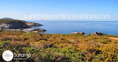 Sardinia seascape