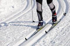 TRÉNINK: Zpestřete si zimní běžeckou přípravu