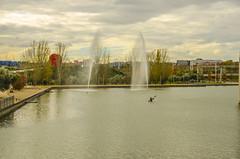 Parque Juan Carlos I - XLII