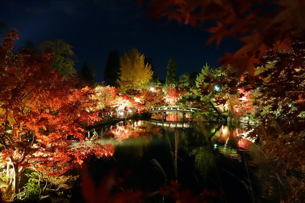 禅林寺永観堂 - 放生池(鶯池)