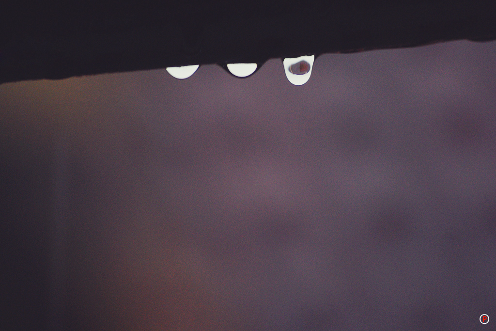 Rainy Day - Water Drop