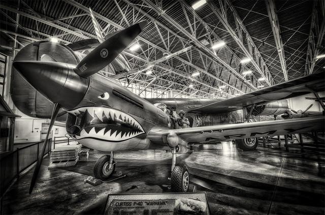 "HJackman_Week 47 - Theme: ""Feeling Nostalgic"" P-40 Warhawk"
