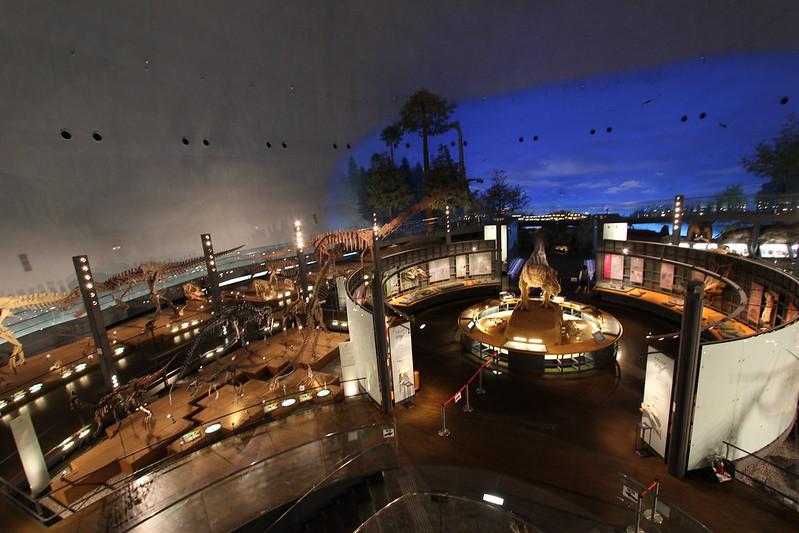 福井県立恐竜博物館 骨格模型とティラノサウルス