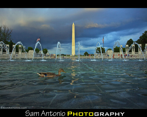 Oh Duck! National World War II Memorial - Washington, D.C. by Sam Antonio Photography