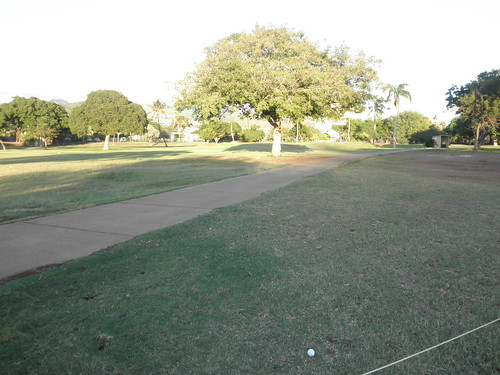 Ala Wai Golf Course 210