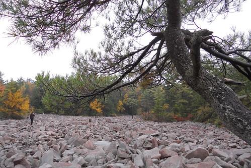 autumn fall rock pennsylvania boulder erosion poconos jimthorpe boulderfield hickoryrunstatepark thepoconos nationalnaturallandmark hickoryrunboulderfield poconosbirthdaysaturday