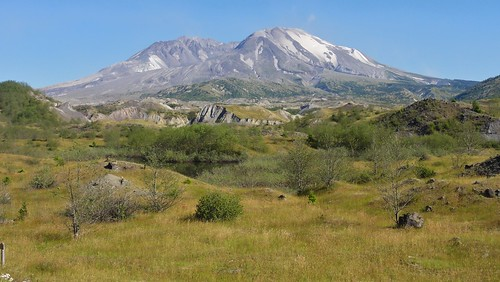 Mount St. Helens seen from the Hummocks Trail.