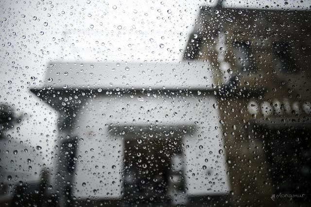Días de lluvia y azúcar
