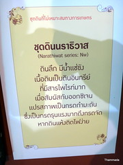 DSC03150