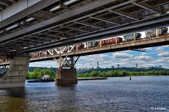 A View From Under The Bridge