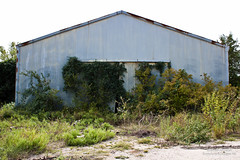 Abandoned Rogers Delinted Cottonseed - Farmersville