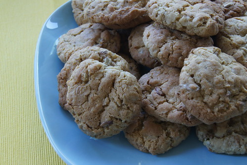 sunflower seed cookies DSC06979