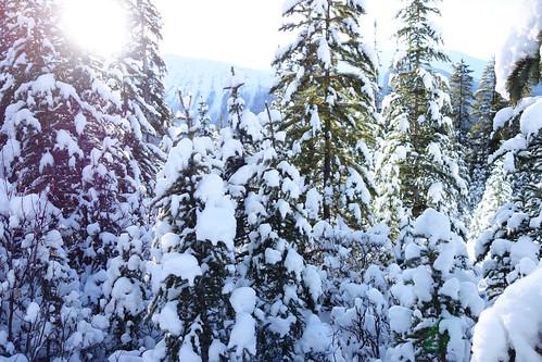 Snowshoeing Rummel Lake-6