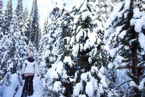Snowshoeing Rummel Lake-18