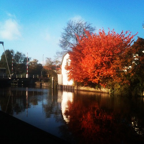 Herfst bij onze overburen #uitzicht #genieten