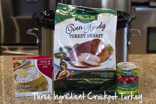 three ingredient crockpot turkey
