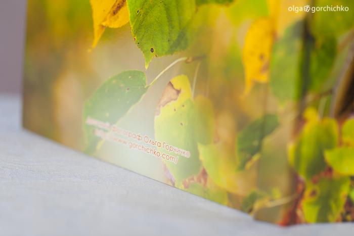 Минибук с осенней фотосессией Насти