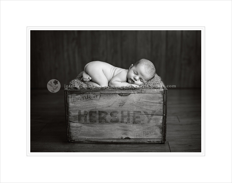 Overland Park newborn photographer
