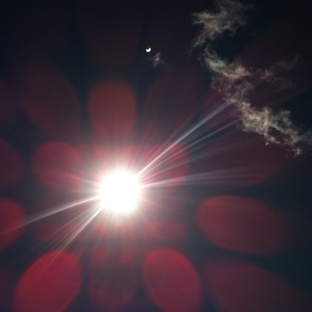 Little eclipse in the lens flare - what a neat effect! Wish I'd tried it when the eclipse was more complete.