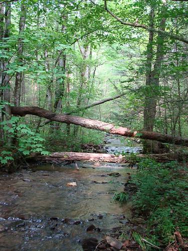 Smoky Mountains Creek (2009)