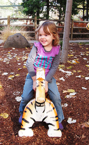 Zoo Boise 11-4-12