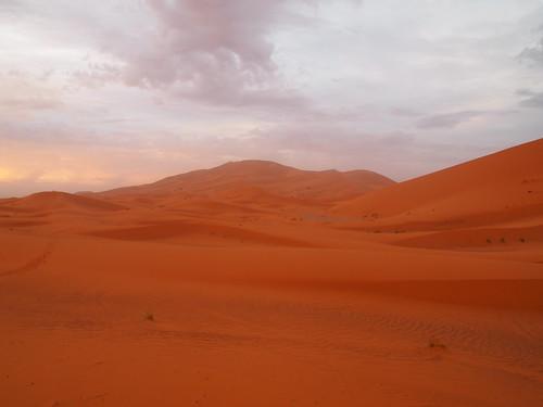 sahara tour camel ride camels 撒哈拉 騎駱駝 駱駝 沙漠 desert 自助旅行 travel morocco 摩洛哥 epl1 pen lite digital mzuiko m43 microfourthird olympus 1442 1442mm sunrise 日出