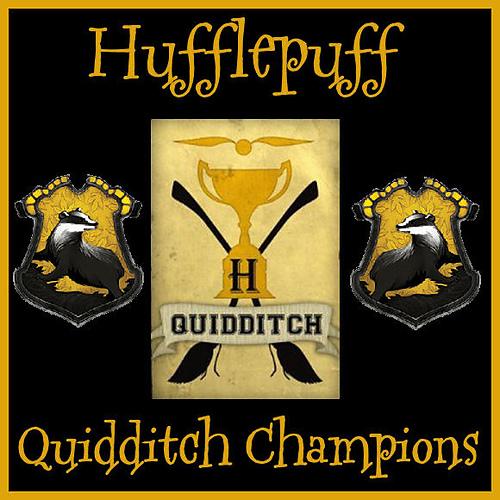 Quidditch champs