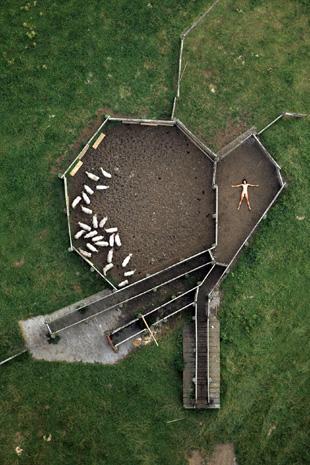 John Crawford's Aerial Nudes