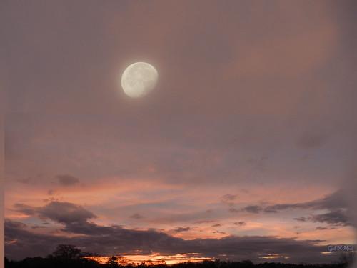 pink sky moon photoshop landscape soe autofocus thegalaxy artdigital flickraward awardtree gailpiland blinkagain bestofblinkwinners rememberthatmomentlevel1 rememberthatmomentl1
