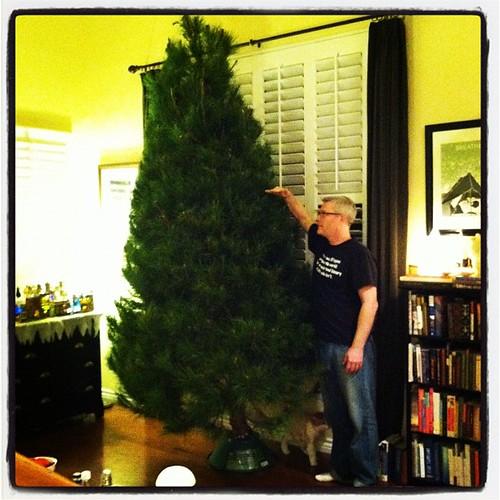 Big fucking tree