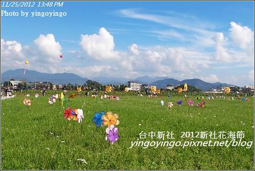 台中新社_2012新社花海節20121125_R0010587