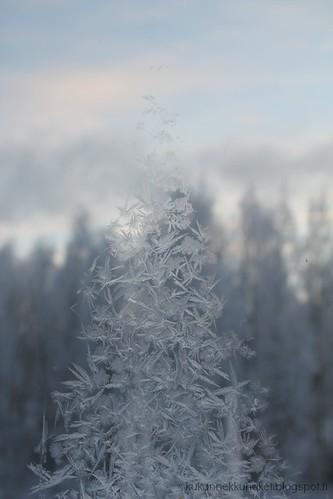 Cold...