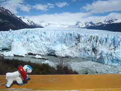 Safetygoat at the Perito Moreno glacier