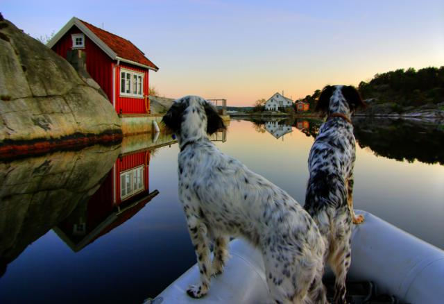 Trudi and Tia by Dariusz Durdyn, Norway