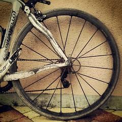 Contrat rempli pour le relai des 6 cyclistes de Cléville: 768km en 24h pour le #téléthon #Normandie