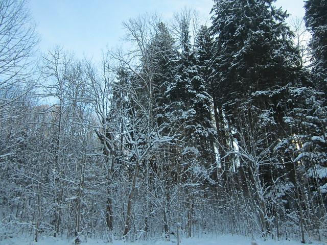 Munich December 2012 078