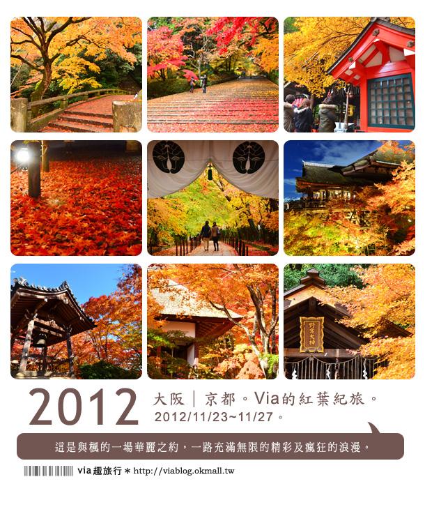 【2012賞楓】日本京都紅葉最前線~via的賞楓全記錄精彩分享!