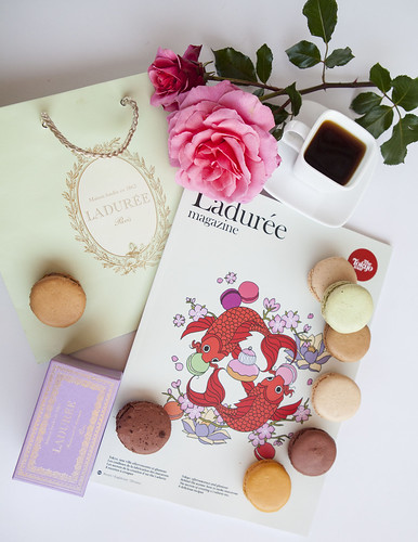 Breakfast of Ladurée macarons