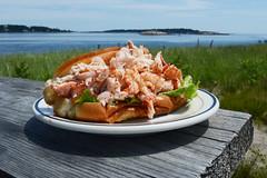 Lobster Roll in Maine DSC_3505