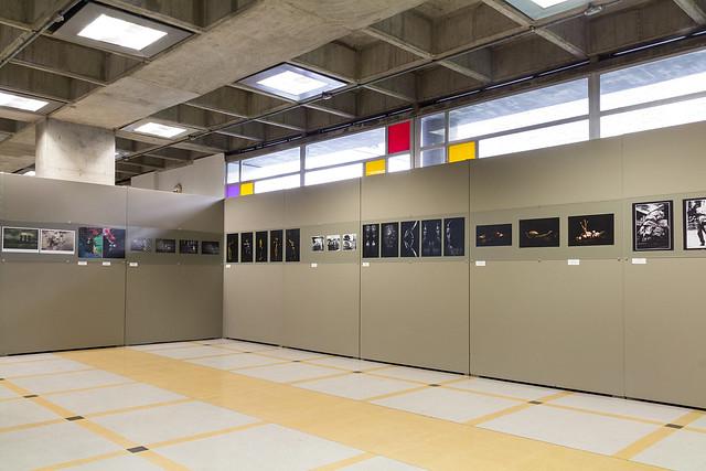 Exposición - Salón de Arte Fotográfico UPB 2012