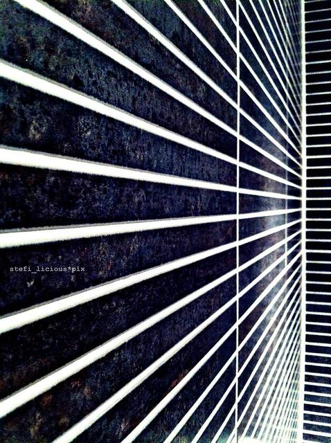 lines_shower