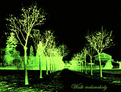 Walk melancholy