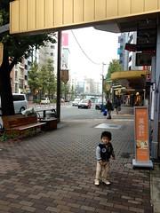 朝散歩 (2012/11/7)
